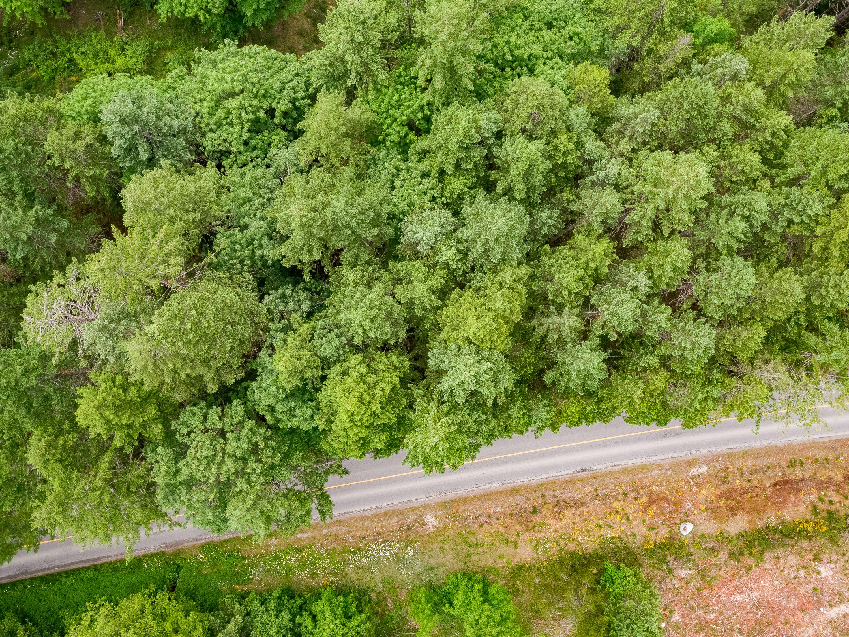 Lot 4 Nanaimo River Road Aerial (23)