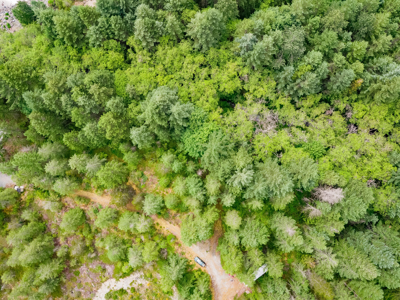Lot 4 Nanaimo River Road Aerial (13)