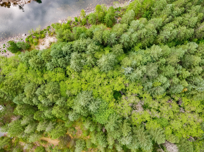 Lot 4 Nanaimo River Road Aerial (12)