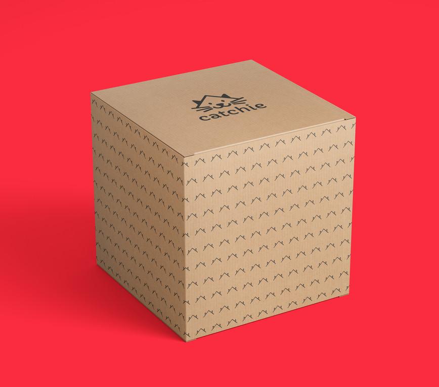 cactchie-caixa.jpg