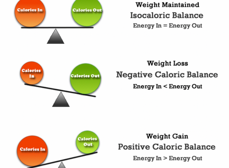 DE ENERGIEBALANS: over calorieën, eiwitten, vetten en koolhydraten (en nog meer!)