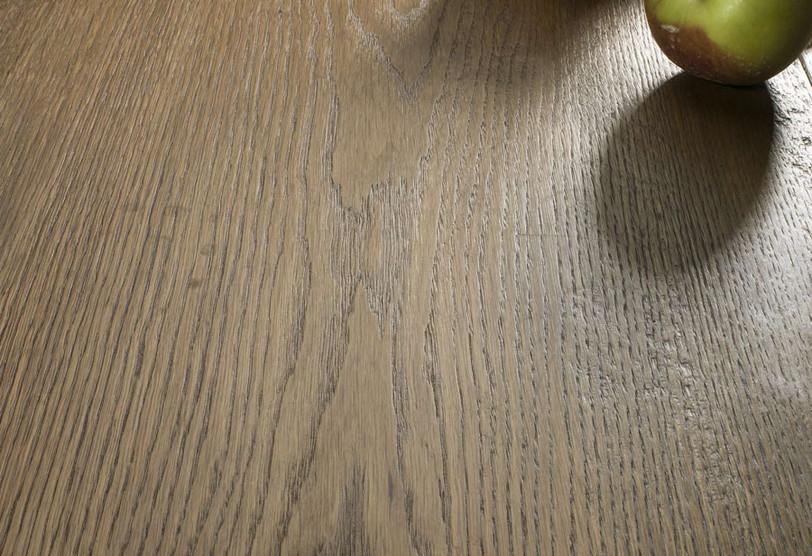 Oak roots 6.jpg