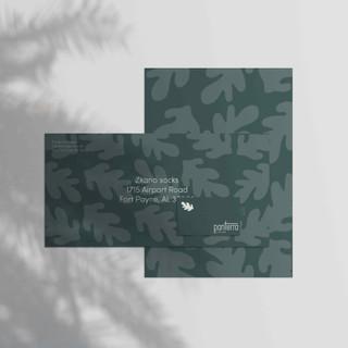 panterra package.jpg
