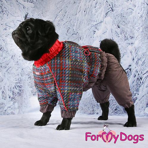 Комбинезон на собаку размером с мопса