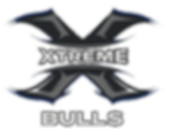 Xtreme Bulls.png