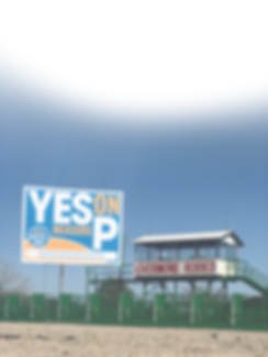 YesOnPArenaPNGWebsite_edited.png