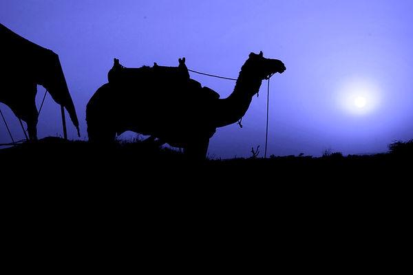 Blue Mood in the Desert, Pushkar, India.