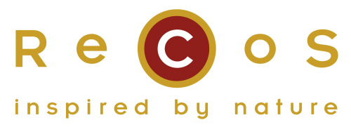 ReCos Logo farbig[1]_2.jpg