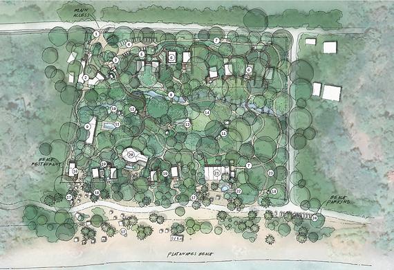 iguana master plan.PNG