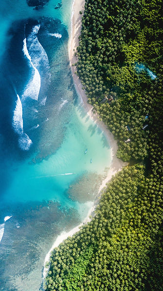 tourismbonds-sea-view.jpg