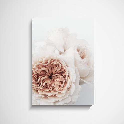 Πόστερ Peachy Flower Ι Διακόσμηση Σπιτιού