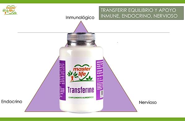 Transferine SCC.png