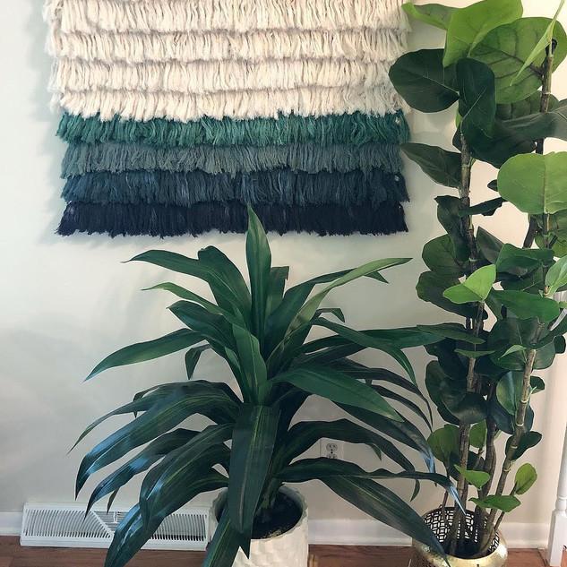 Succulent Texture