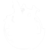 LOGO SWING FOLIES_2015_Blanc_WEB (3).png