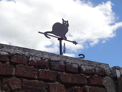 Une girouette chat montre la direction