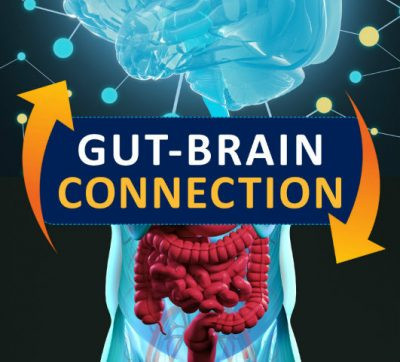 Gut-Brain connection - myth or fact