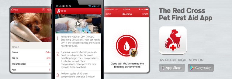 Pet First Aid App