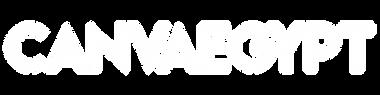 White Logo PNG.png