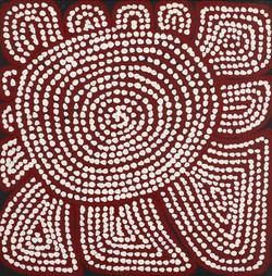 532_1_normal_aborigene_dec_007342