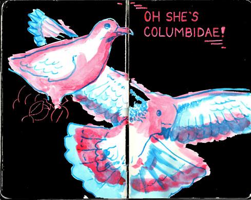 Oh She's Columbidae