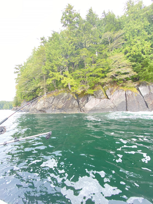 Victory Cove.HEIC