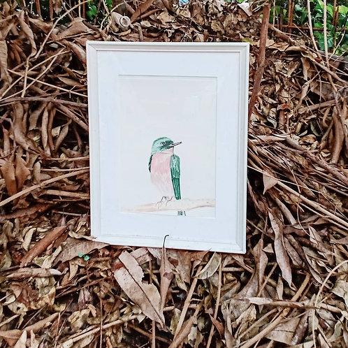 Pink and Emerald Bird