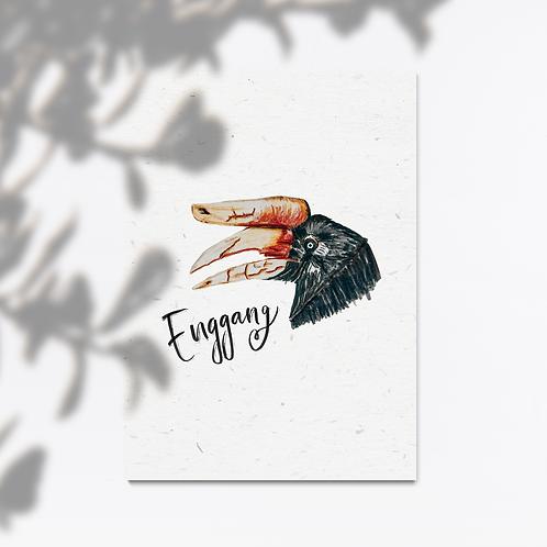 Enggang Bird