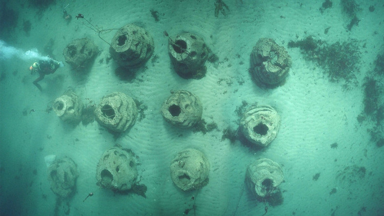 Paddys Head Reef Balls 6.jpg