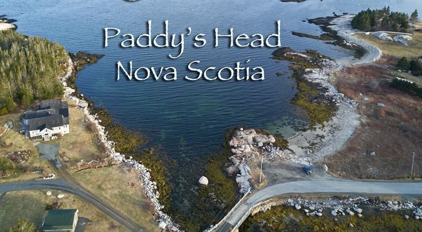 Paddy's Head