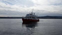 Mermaid Boat Newfoundland