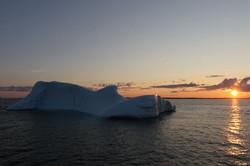 Iceberg Newfoundladn Sunset