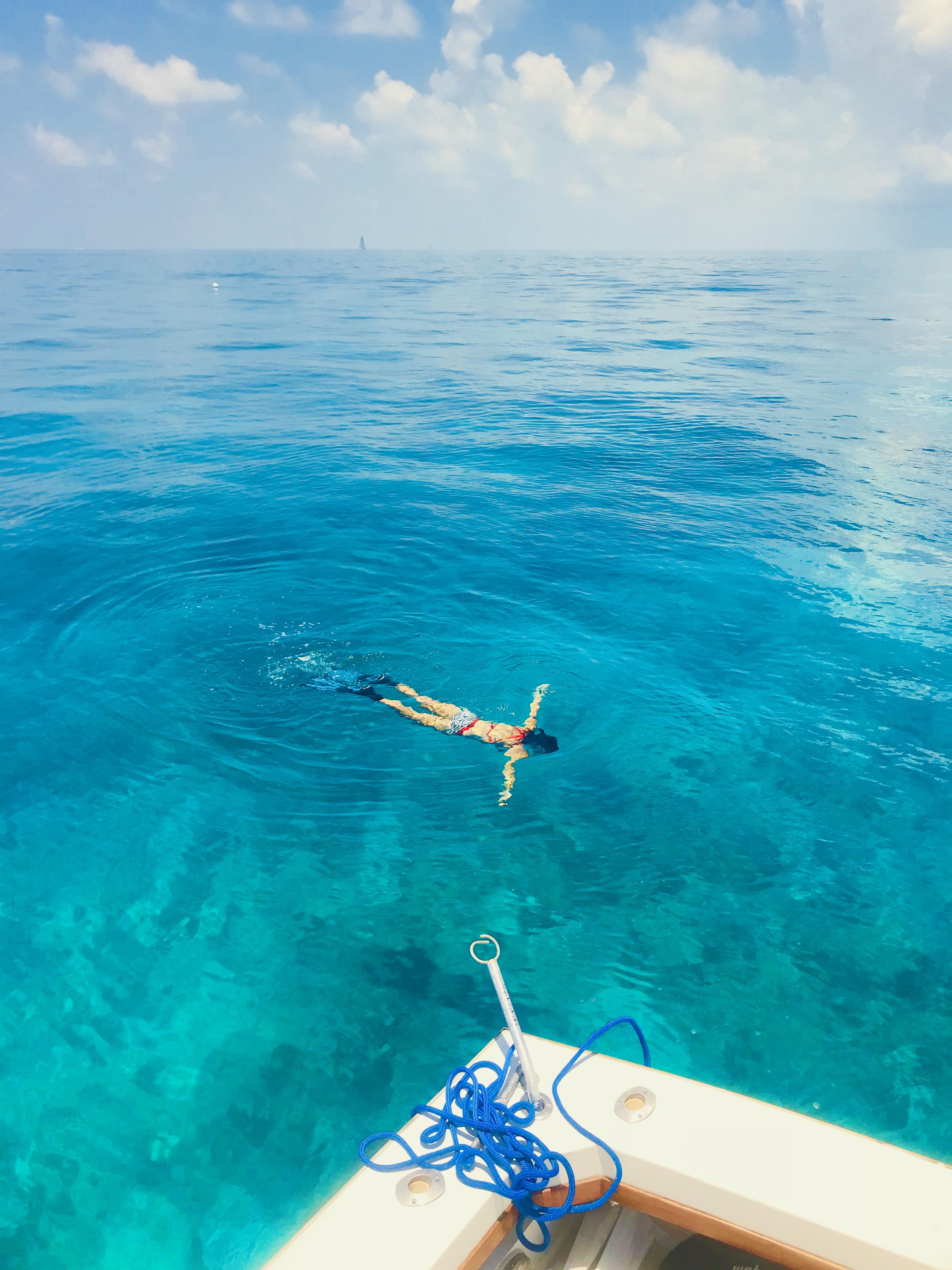 Snorkeling with Sea Monkey