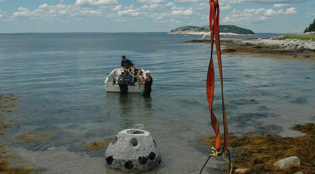 Paddys Head Reef Balls