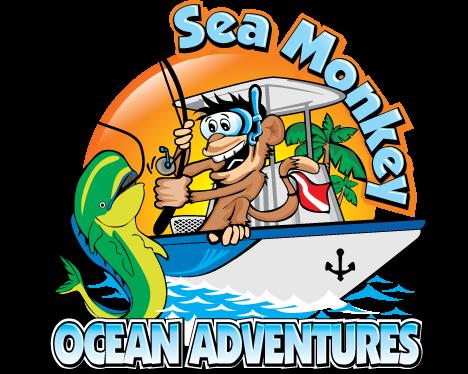 Sea Monkey