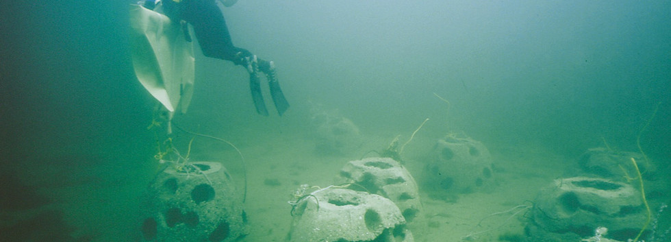 Paddys Head Reef Balls 5.jpg