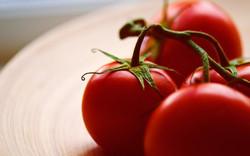 background_tomato
