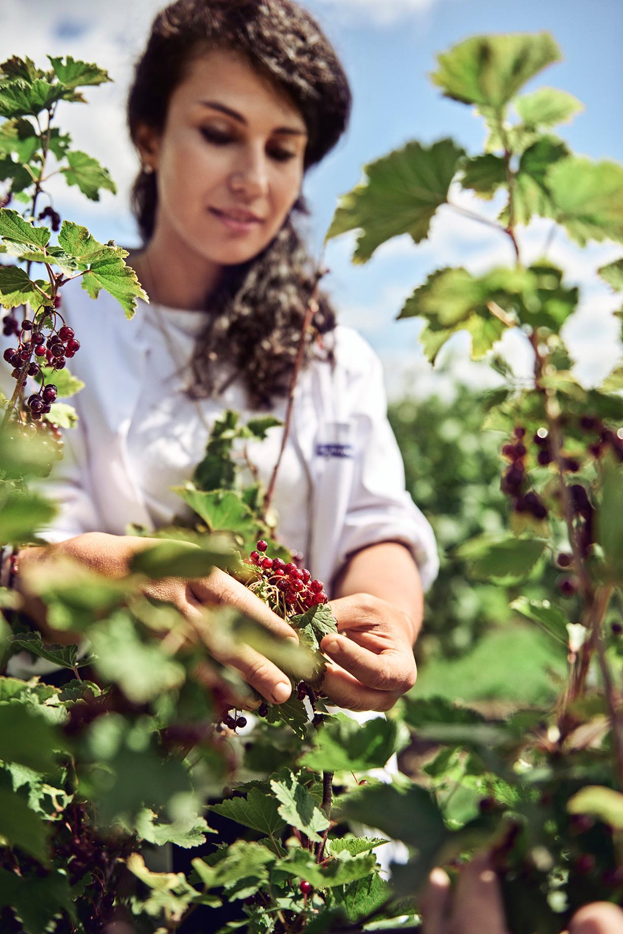 chr. H. Jordbær-74.jpg