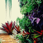 Jardim Vertical - Ideia Verde
