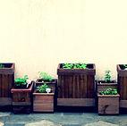 Horta - Ideia Verde