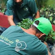 Equipe Ideia Verde
