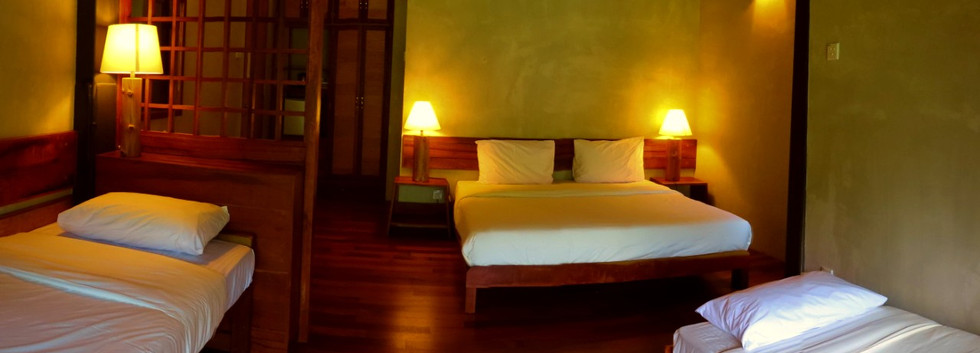 Room with A King Bed And 2 Day Bed