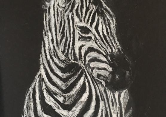 Zebra (2020)