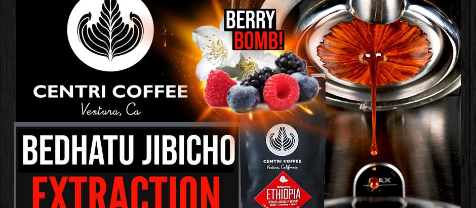 Berry Bomb! Centri Coffee's Ethiopia Bedhatu Jibicho Extraction & Review