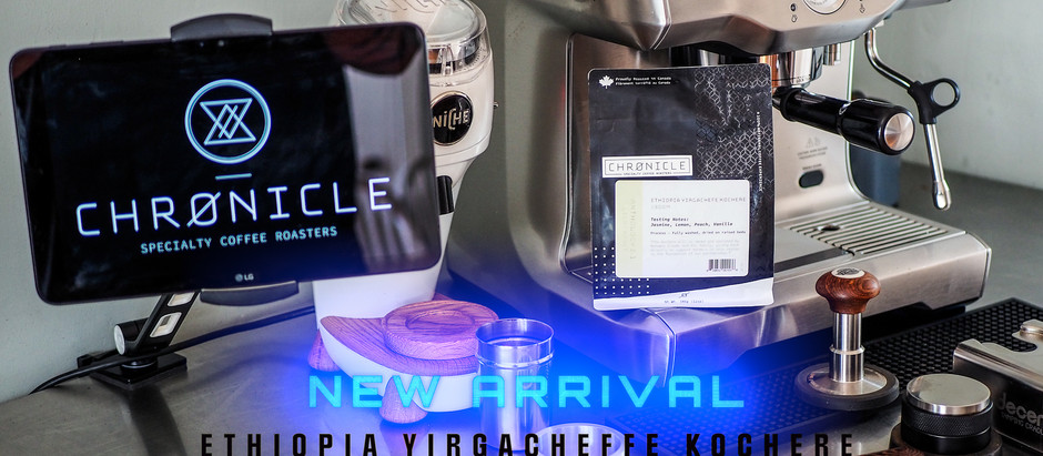 Going for Seconds - New Arrival from Chronicle Coffee