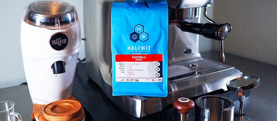 New Arrival! Halfwit Coffee - Guatemala Pachuj