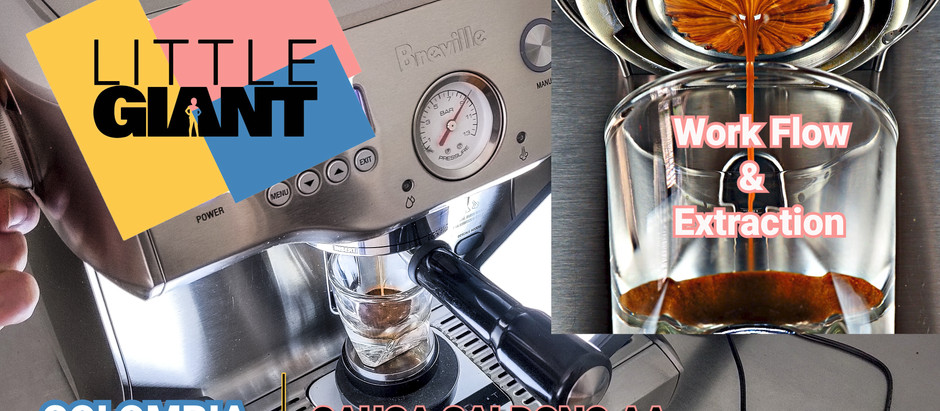 Little Giant Coffee - Big Flavor in the Goldilocks Zone!