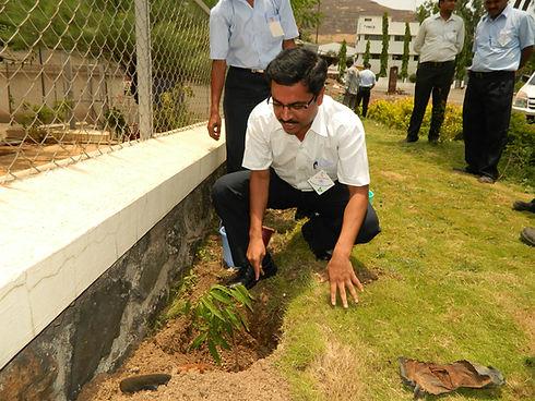 Tree Plantation csr activity at reliable