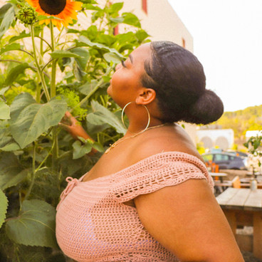 Duluth Sunflowers