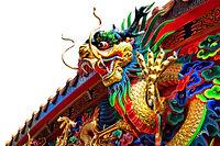 dragon on white background.jpg