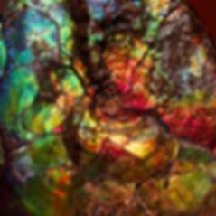 Ammolite detail LR.jpg